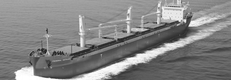 Dry bulk / Breakbulk Vessel Chartering